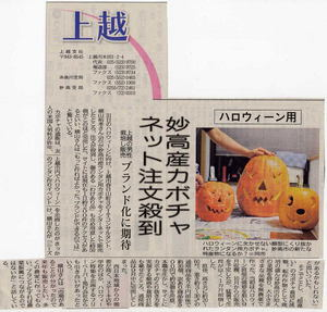横山,ハロウィンかぼちゃ,新潟日報
