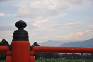 高田公園のはすまつり