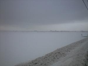 霧の高田市街地