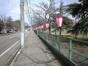 もうすぐ観桜会