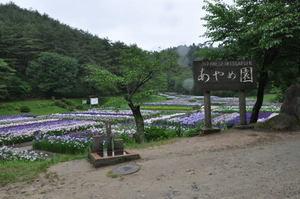 新発田、五十公野公園