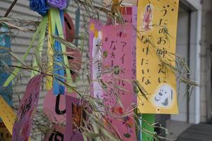 本町の七夕祭り 6