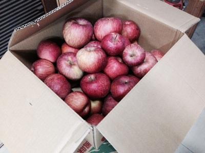 信州リンゴ