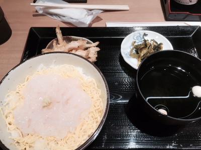 生白エビ丼