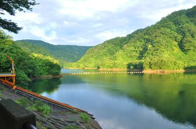 ダム湖のあじさい