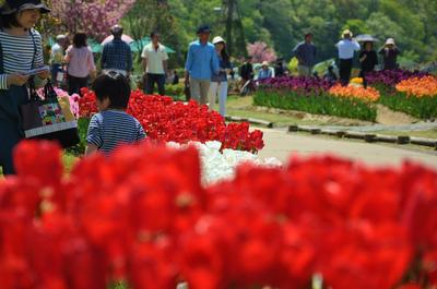 長岡丘陵公園