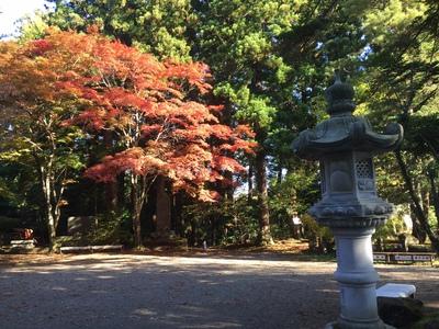 春日山神社の紅葉